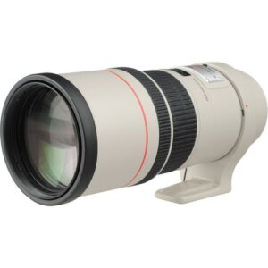 Canon EF 300mm f4L IS USM 5